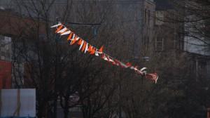 Flags in Alleyway